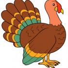 Kamikaze Turkey